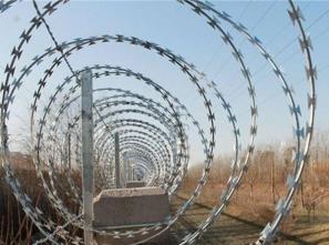 高铁刺丝滚笼生产
